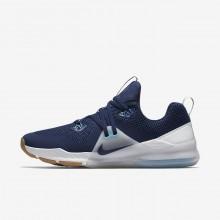 Nike Zoom Training Shoes Mens Blue/Platinum/White/Blue EJ9987NP