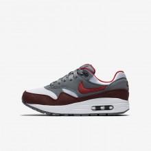 Nike Air Max 1 Lifestyle Shoes Boys White/Grey/Red FI3110TK