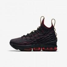 Nike LeBron 15 Basketball Shoes Boys Dark Turquoise/Red/Brown RF4535RY