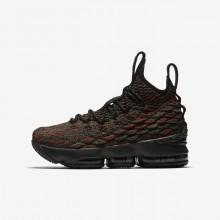 Nike LeBron 15 Basketball Shoes Boys Multicolor/Black UO4091GJ