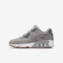Nike Air Max 90 Lifestyle Shoes Girls Grey/White/Light Brown ZX4833NO